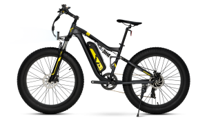 Fat Bike plus